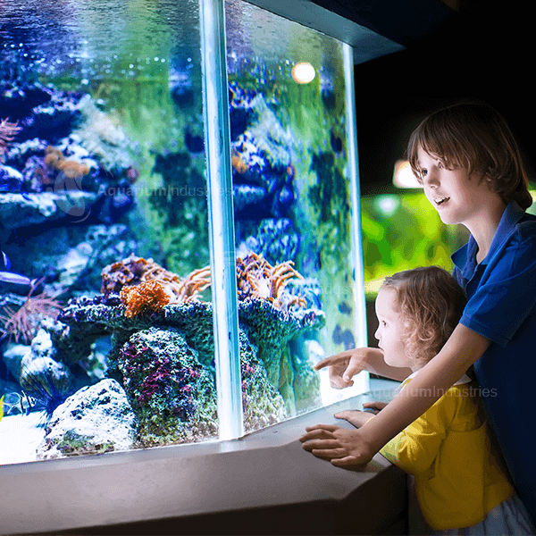 The Health benefits of Aquariums Aquarium Industries