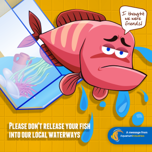 Dont release fish into the environment image