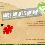 Frozen_Baby-Brine-Shrimp_F